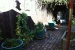 Katie's yard