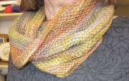 View 1 - Honeycomb Cowl